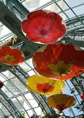 Любите ливы зонтики так, каклюблю ихя?. Изображение № 14.