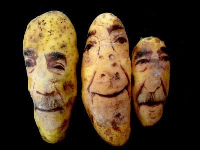 Картофельные портреты. Изображение № 18.