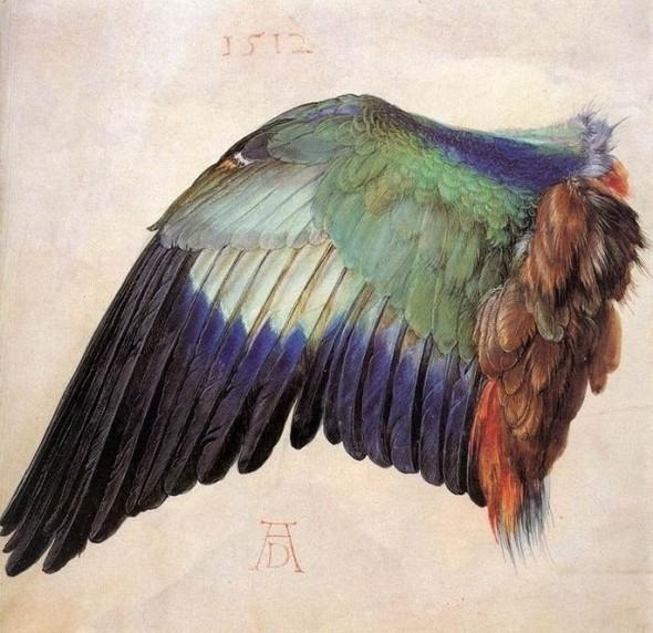 АЛЬБРЕХТ ДЮРЕР (1471–1528). Изображение № 5.