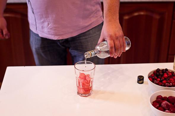 Пляшем дома: Коктейли для домашней вечеринки. Изображение № 25.