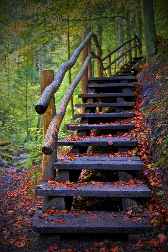 23 необычные лестницы и несколько интересных фактов о них. Изображение № 14.
