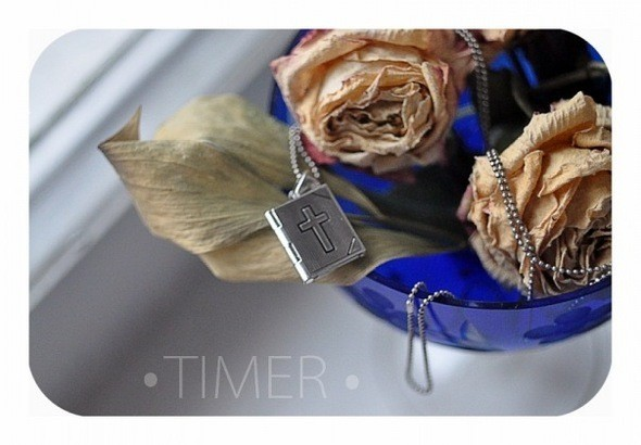 Изображение 4. TIMER.. Изображение № 4.