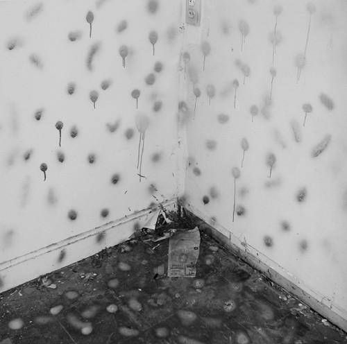 John Divola. Фотографический вандализм. Изображение № 1.