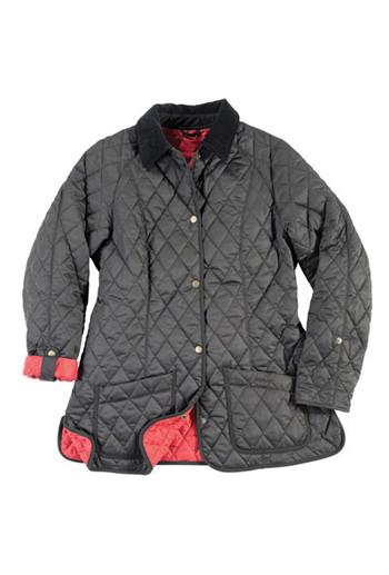 Мужские коллекции осень-зима 2010 от Hackett, Gloverall, D.S.Dundee, Barbour. Изображение № 18.