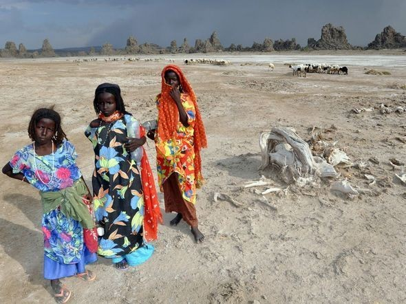 Goat Herders, Djibouti. Изображение № 15.