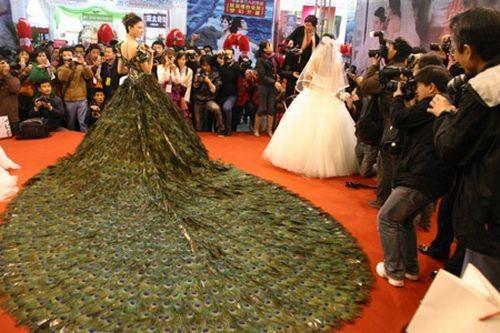 Свадебное платье изперьев павлина. Изображение № 1.