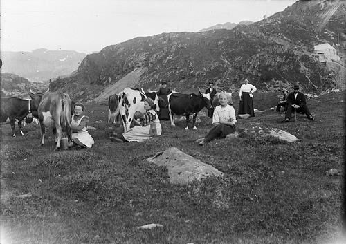 Фотографии ферм начала XX века. Изображение № 3.