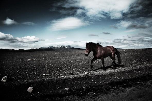 Интересный фотограф Андерс Берг (Anders Bergh). Изображение № 1.