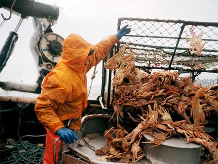 Каково быть рыболовом вАрктике. Изображение № 3.