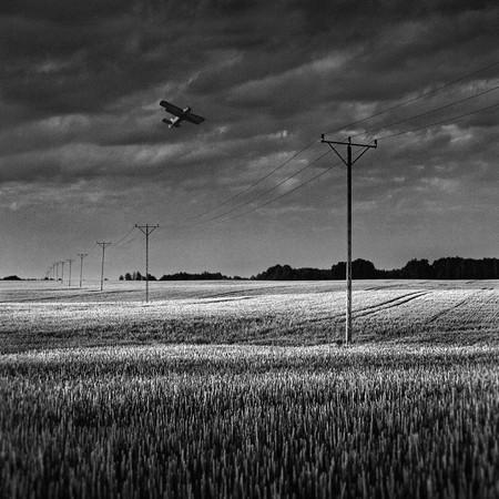 Фото Dariusz Klimczak. Изображение № 6.