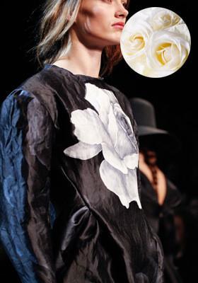 Цветной: 35 принтов из коллекций FW 2011. Изображение № 39.