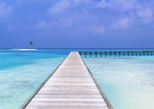 Пляжный отдых: ALL THE BEST. Изображение № 1.