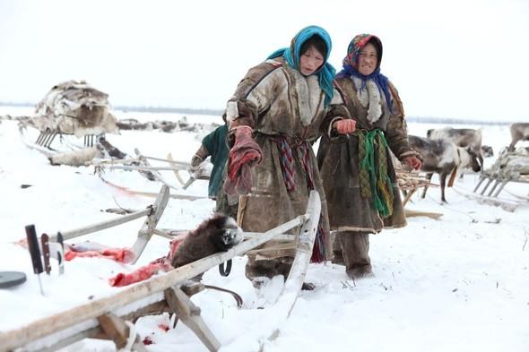 Путешествие на Север к ненцам. Изображение № 21.