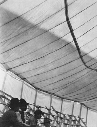 Tina Modotti. Изображение № 34.