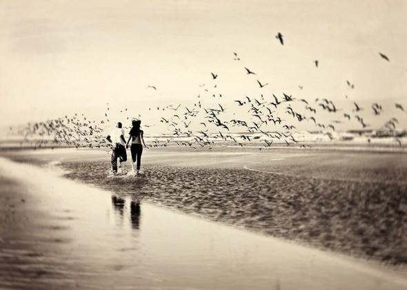 романтика нежность картинки фото