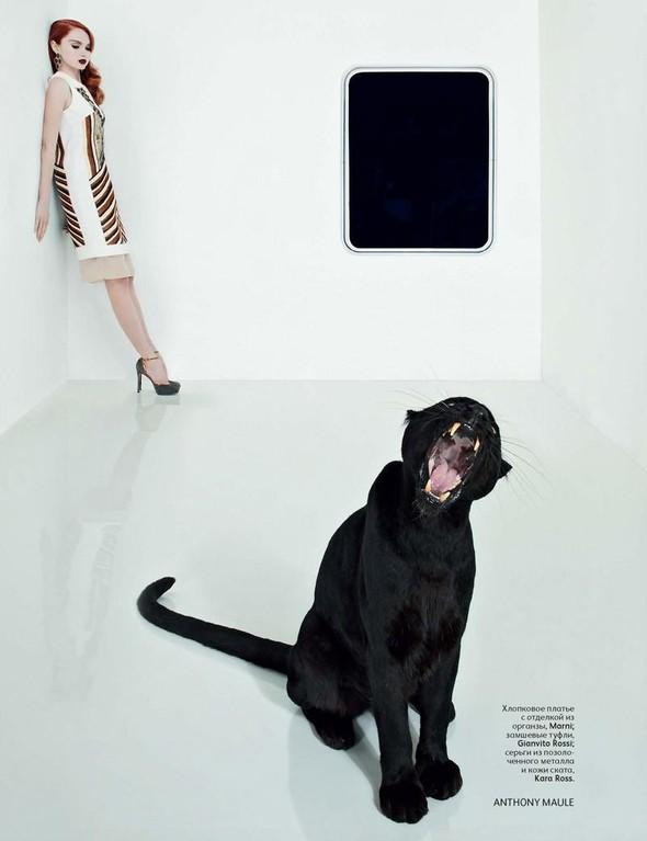 Съёмка: Лили Коул для российского Vogue. Изображение № 4.