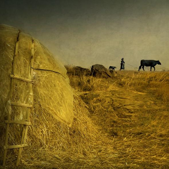 Загадочно-прекрасный мир болгарской фотохудожницы Магдалены Ванли. Изображение № 6.
