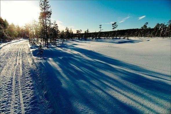 Изображение 24. Выходные в шведском лесу.. Изображение № 24.