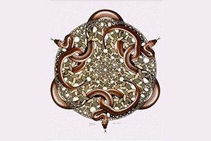 Икона эпохи: Мауриц Корнелис Эшер. Изображение № 6.