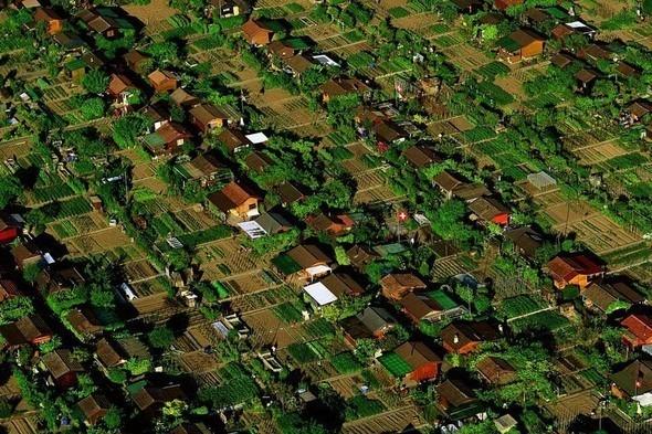 Дачный поселок в окрестностях Женевы, Швейцария. Изображение № 4.