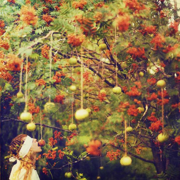 Lissy Elle Photography. Изображение № 19.