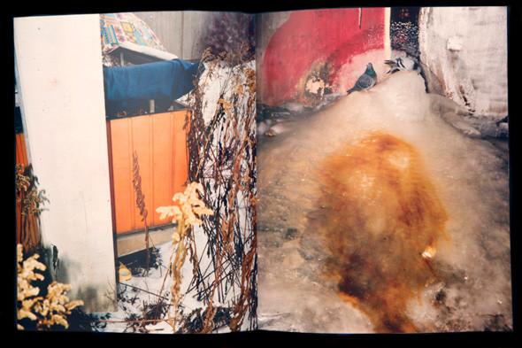 9 атмосферных фотоальбомов о зиме. Изображение № 63.