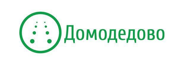 Редизайн: Новый логотип Домодедово. Изображение № 8.