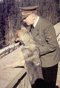 Животные и их Люди. Изображение № 1.