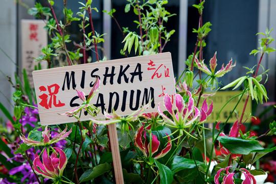 Mishka в Токио. Изображение № 4.