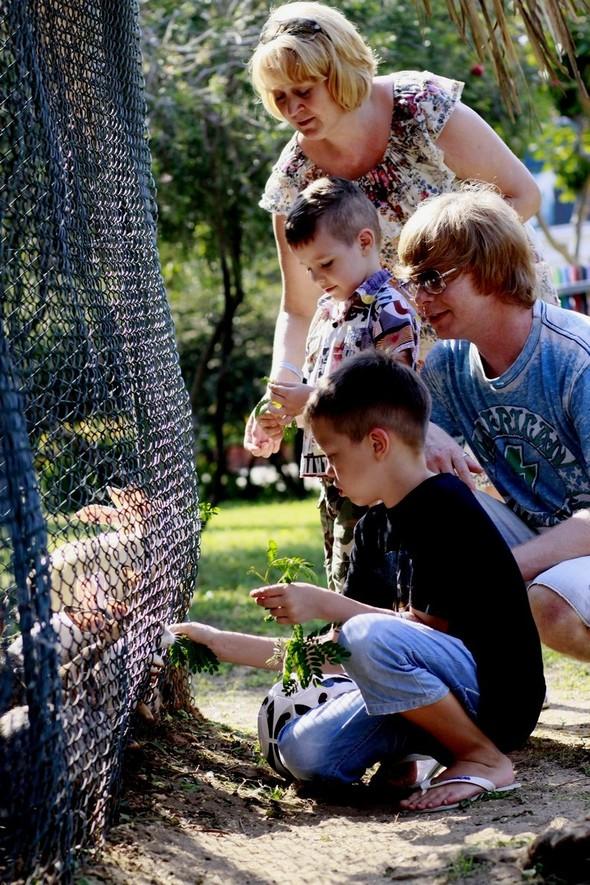 VI Слет Международного творческого движения Республика KIDS  2012 прош. Изображение № 10.
