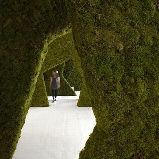 Диалог с природой: вертикальные сады. Изображение № 28.