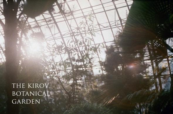 Прогулка по Ботаническому саду. Изображение № 16.