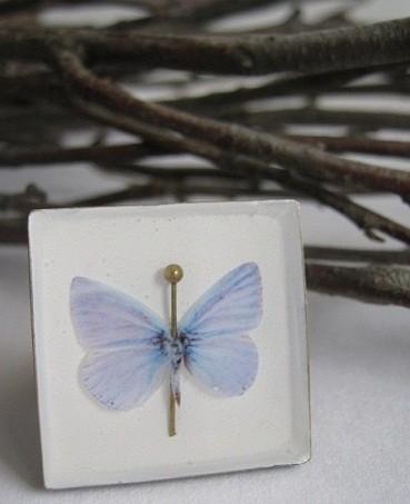 Бабочка и горностай. Изображение № 2.