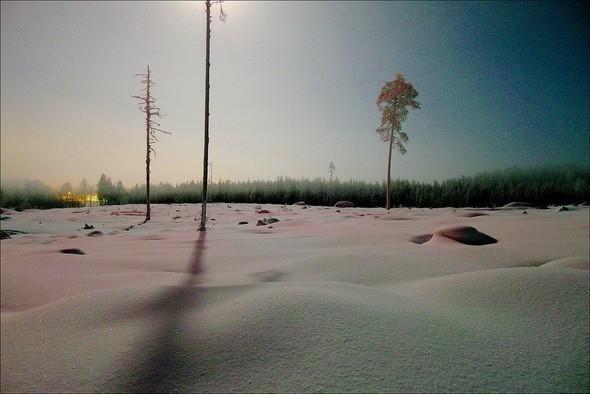 Изображение 7. Выходные в шведском лесу.. Изображение № 7.
