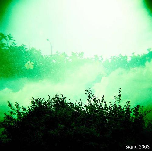 Волшебный ЛОМО-мир Sigrid Chien. Изображение № 19.