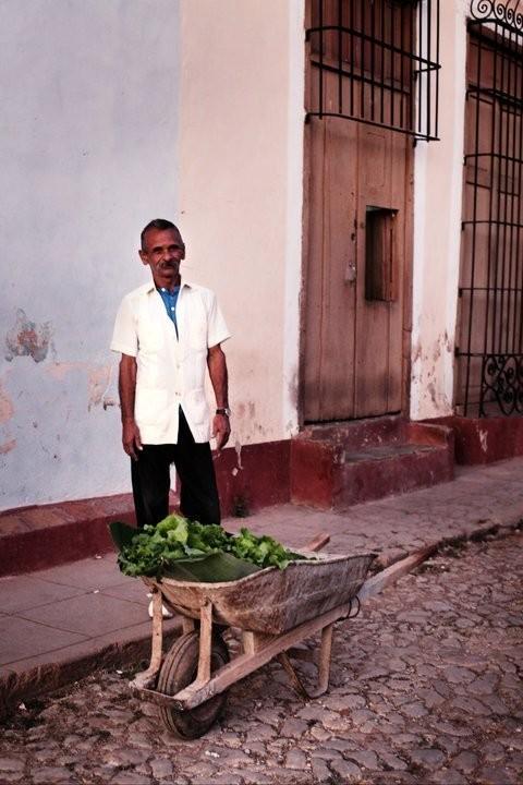 Изображение 33. Кубинский лук. Зима 2010/2011.. Изображение № 35.
