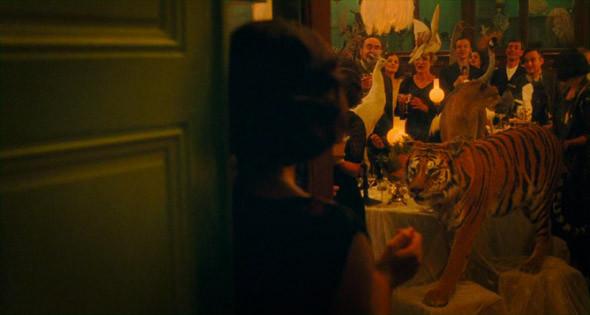 14. Deyrolle Самый удивительный магазин Парижа на левом берегу Сены, недалеко от музея Орсэ, который официально считается таксидермистской лавкой (где делают и продают чучела с 1831 года). Первый этаж, где можно купить товары и одежду для дома, не предвещает ничего поразительного (кроме двух газелей, наряженных в пиджаки и рубашки) —зато на втором попадаешь в общество белых медведей, гусей, леопардов, зебр и прочей некогда живности, чинно сидящей за чаепитием.. Изображение №86.