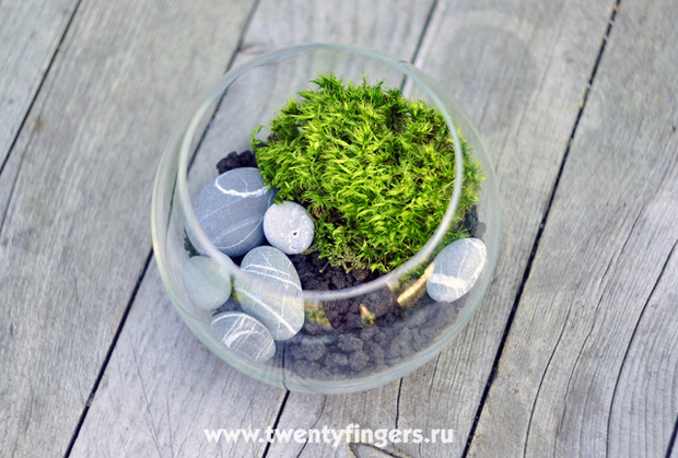 Вечнозеленый маленький мир.. Изображение № 4.