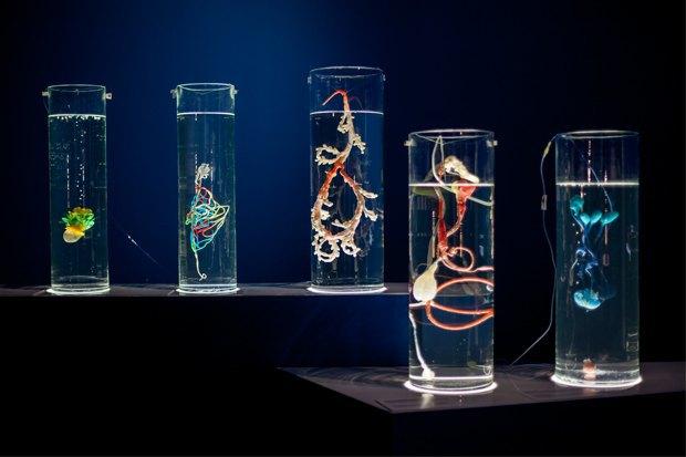 Как пластик может стать основой для новой жизни. Изображение № 4.