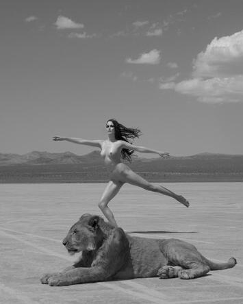Sylvie Blum BigCats. Изображение № 4.
