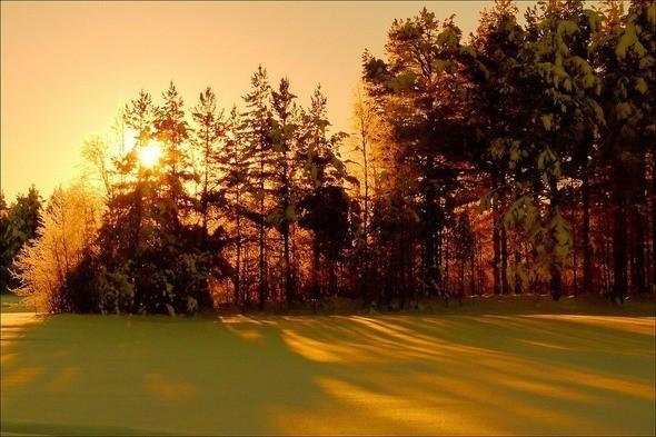 Изображение 38. Выходные в шведском лесу.. Изображение № 38.