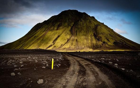 Фотоконкурс National Geographic 2010. Изображение № 44.