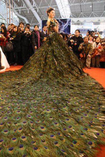 Свадебное платье изперьев павлина. Изображение № 2.