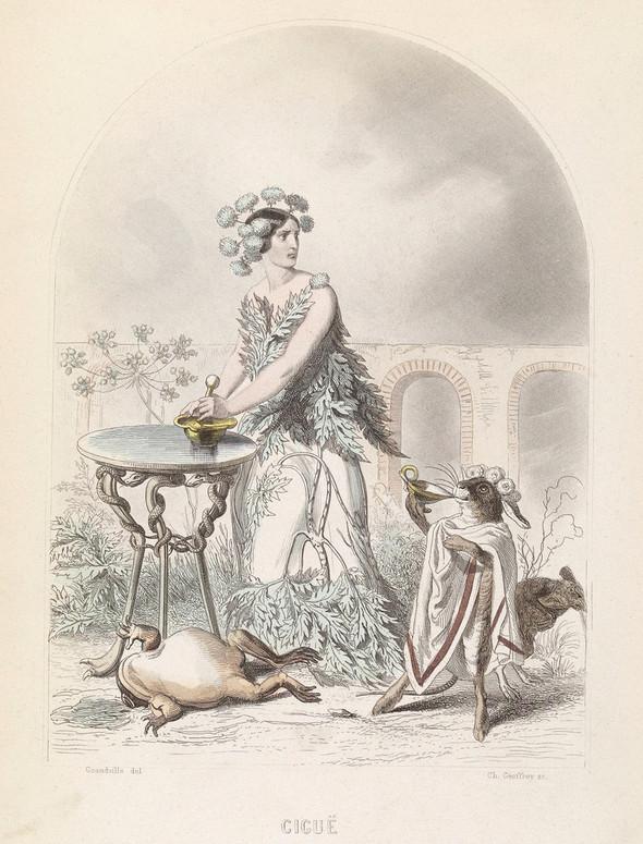 Винтажные иллюстрации J.J. Grandville. Изображение № 15.
