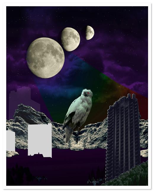 Birds Of Claire. Изображение № 46.