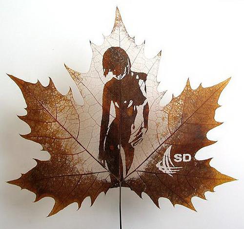 Резьба по листьям. Изображение № 9.