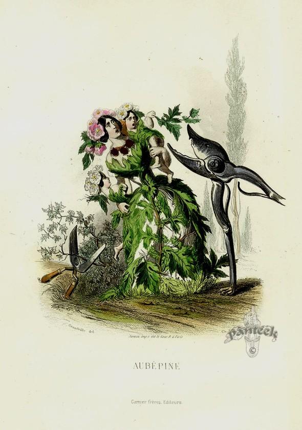 Винтажные иллюстрации J.J. Grandville. Изображение № 7.