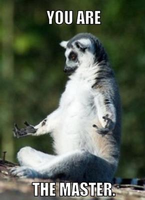 В мире животных: Герои «Мадагаскара» в мемах, рекламе и видеороликах. Изображение № 78.