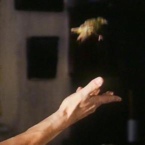 Прорыв: «Грозовой перевал» Андреа Арнольд. Изображение № 52.