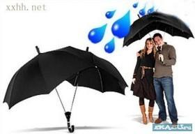 Сезон зонтов. Изображение № 7.
